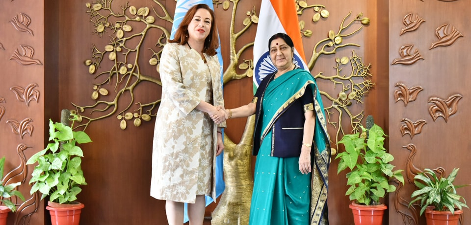 External Affairs Minister meets Maria Fernanda Espinosa Garces, President Elect of The 73rd United Nations General Assembly in JNB